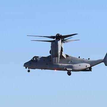Osprey In Flight by kkphoto1