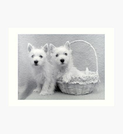 the Puppy Basket Art Print