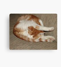 Weird Sleeping Position Canvas Print