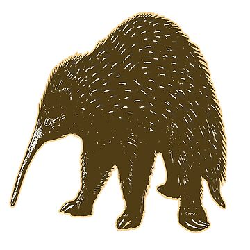 Echidna Illustration | Australian Animal | Egg Laying Mammal | Natural History | Science  by encyclo-art