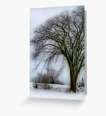 Tree Elder Greeting Card