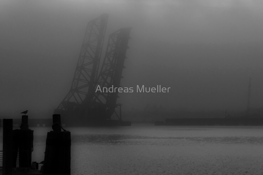 Only The Seagulls Know by Andreas Mueller