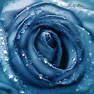 Baby Blue by Nina  Larsen