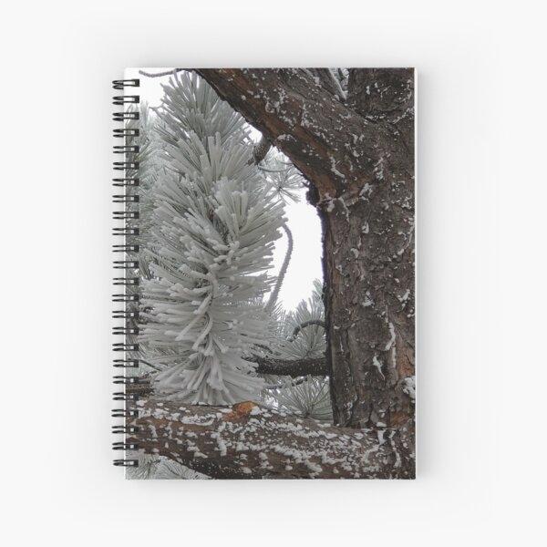 Winter Frost Spiral Notebook