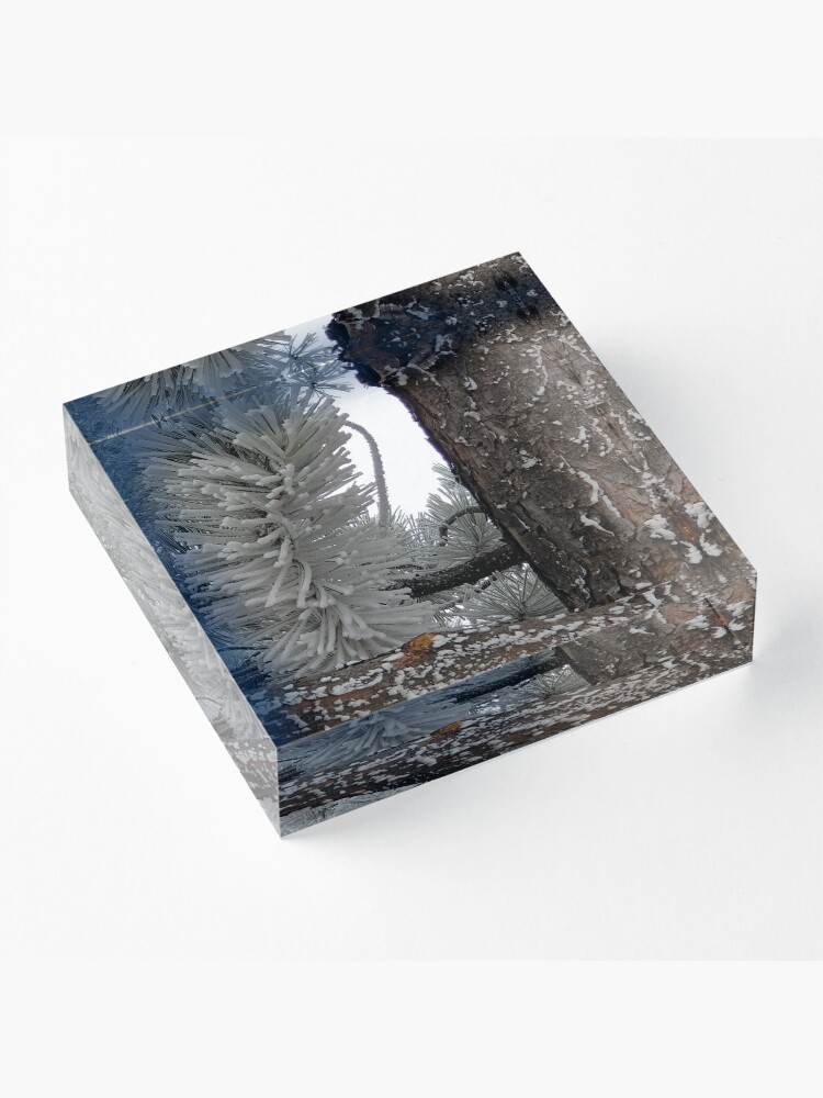 Alternate view of Winter Frost Acrylic Block