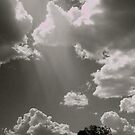 Central Australia Skyscape by Louise Fahy