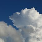 Billowy clouds before the storm by memaggie