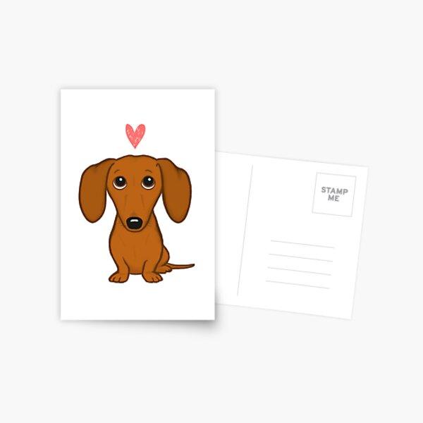 Dachshund in a Sweater Postcards Postcard Set Greeting Stationery Dog Lover Dachshund Postcard Dog Postcard Dachshund Card