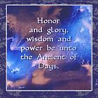 Honor and Glory by Patricia Howitt