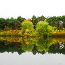 Reflections (high Park)!... by sendao