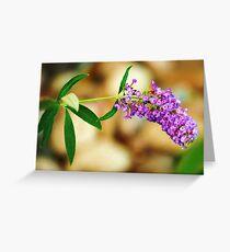 Purple Bokeh Greeting Card