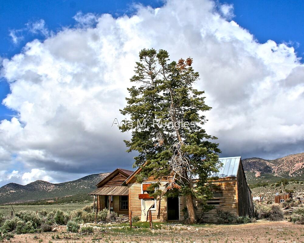 Leanin' Tree House - Cherry Creek, NV by Arla M. Ruggles