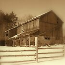 A Struggling Barn..... try as it may, is all but dead... by Larry Llewellyn
