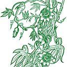 « Passiflore verte » par Stylet-Pinceau