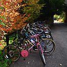 Bikes by LudaNayvelt