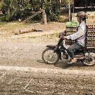 Vietnam: Egg-stra Careful! by Kasia-D