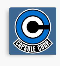 Capsule Canvas Print
