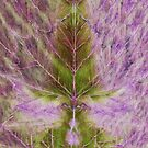 Leaf drawing by MEDUSA GraphicART