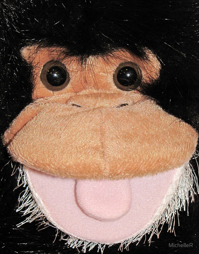 Monkey Face by MichelleR