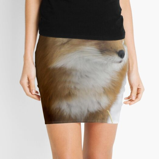... waiting for spring here in Quebec Canada... Mini Skirt