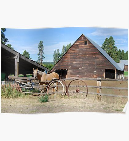 Horse by the barn Poster