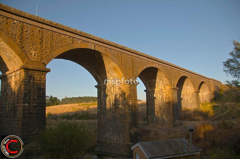Malmsbury Arches by mspfoto