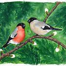 Bullfinch couple by Teresewa
