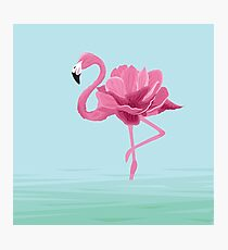 Flowermingo Photographic Print