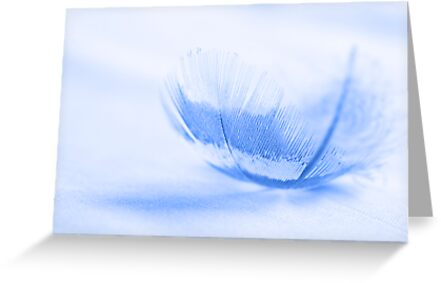 We are each of us angels with only one wing, to fly we need only embrace each other. by Angela Criss