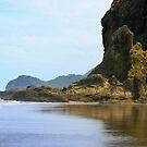Piha beach North Island New Zealand by Dave Cauchi