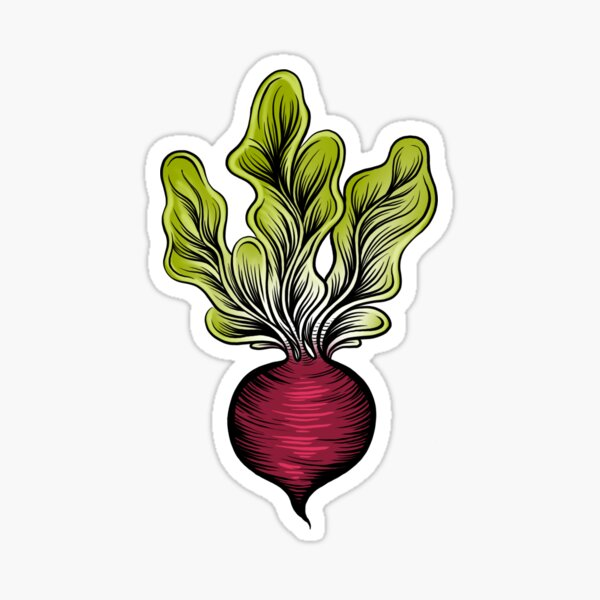 Beets are Best Sticker