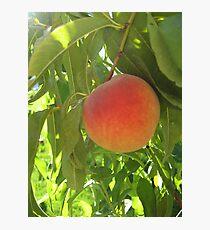 Peach Photographic Print