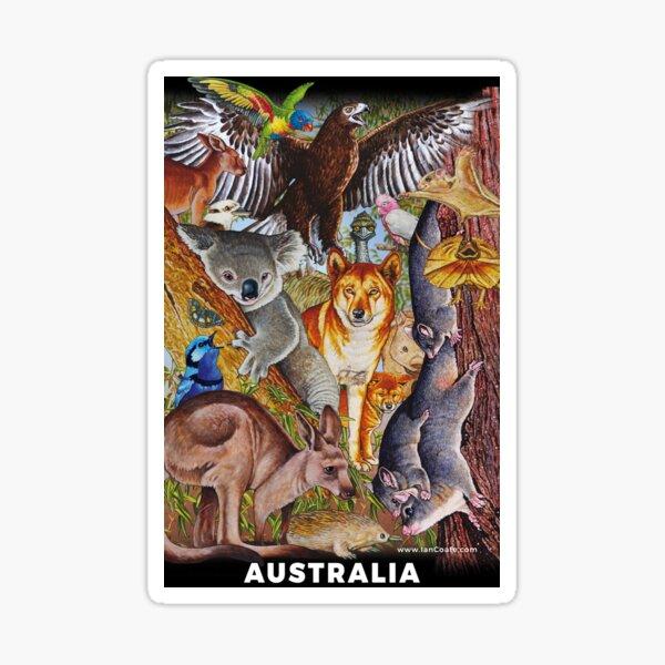 Australian Animals Designs 2 Sticker