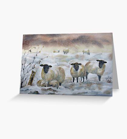 Winter Woolies Greeting Card