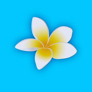 Plumeria Blossom in White and Yellow by bonnie-follett