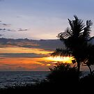 Tropical Sunset by mc27