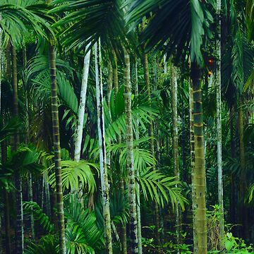 Jungle Forest, Deep Greens and Lush by rhoadsette