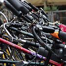 Bicycles in Delft by Steve Hammond