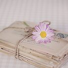 Shabby Chic Old Letters And Daisy by artsandsoul