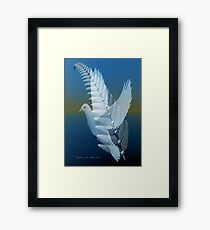 ~ SILVER WING ~ Framed Print