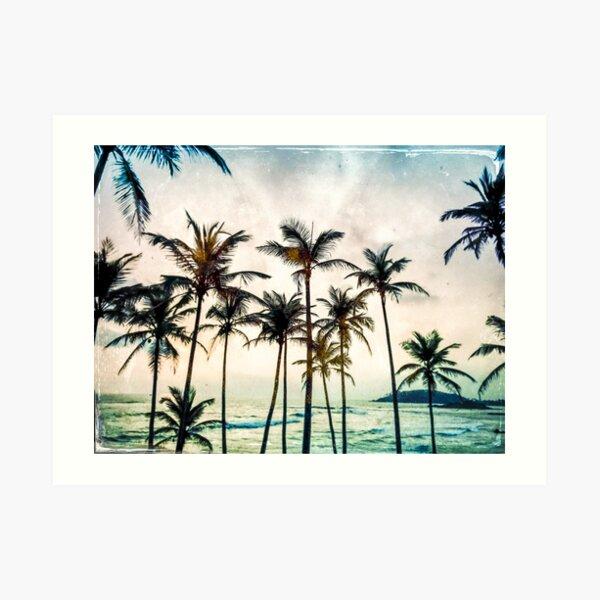 No palms Art Print