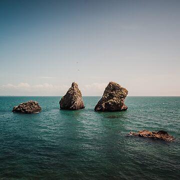 Rocks From the Sea by salvatoreru