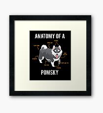Anatomy of Pomsky Framed Print