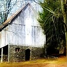 A Hidden Barn in West Chester, PA by Polly Peacock