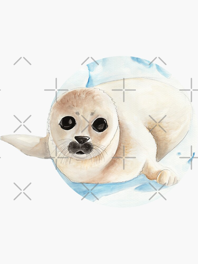 Baby seal in watercolor by nobelbunt