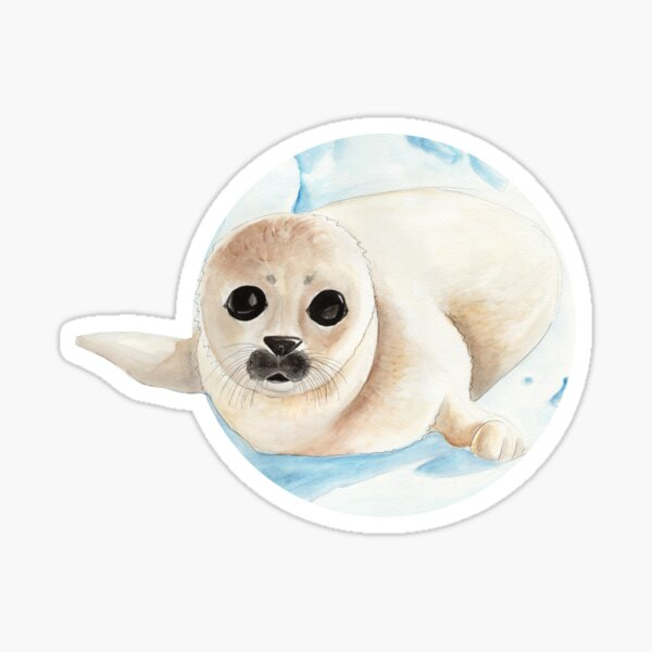 Baby seal in watercolor Sticker