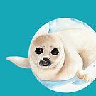 Baby seal in watercolor by nobelbunt