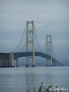 The Mighty Mac. by Shelly Harris