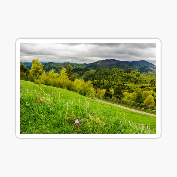 grassy fields on forested hills Sticker
