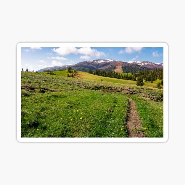 grassy fields on rolling hills Sticker